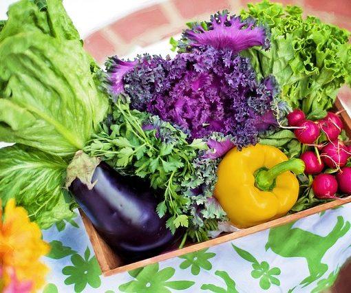 Ketogén diéta inzulinrezisztencia - KetogénDiéta.Info
